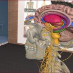 Descargar 3D Organon VR Anatomy para Oculus Rift